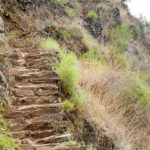 originaler Inca-Trail auf dem Weg zu Machu Picchu