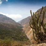 Colca Canyon Aussichtspunkt