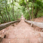 Treppensteigen soll ja gesund sein